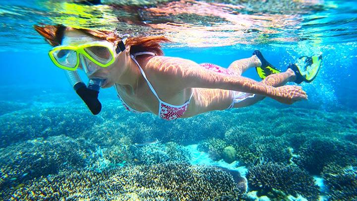 Best Florida Panhandle Snorkeling Top 16 Snorkel Dives